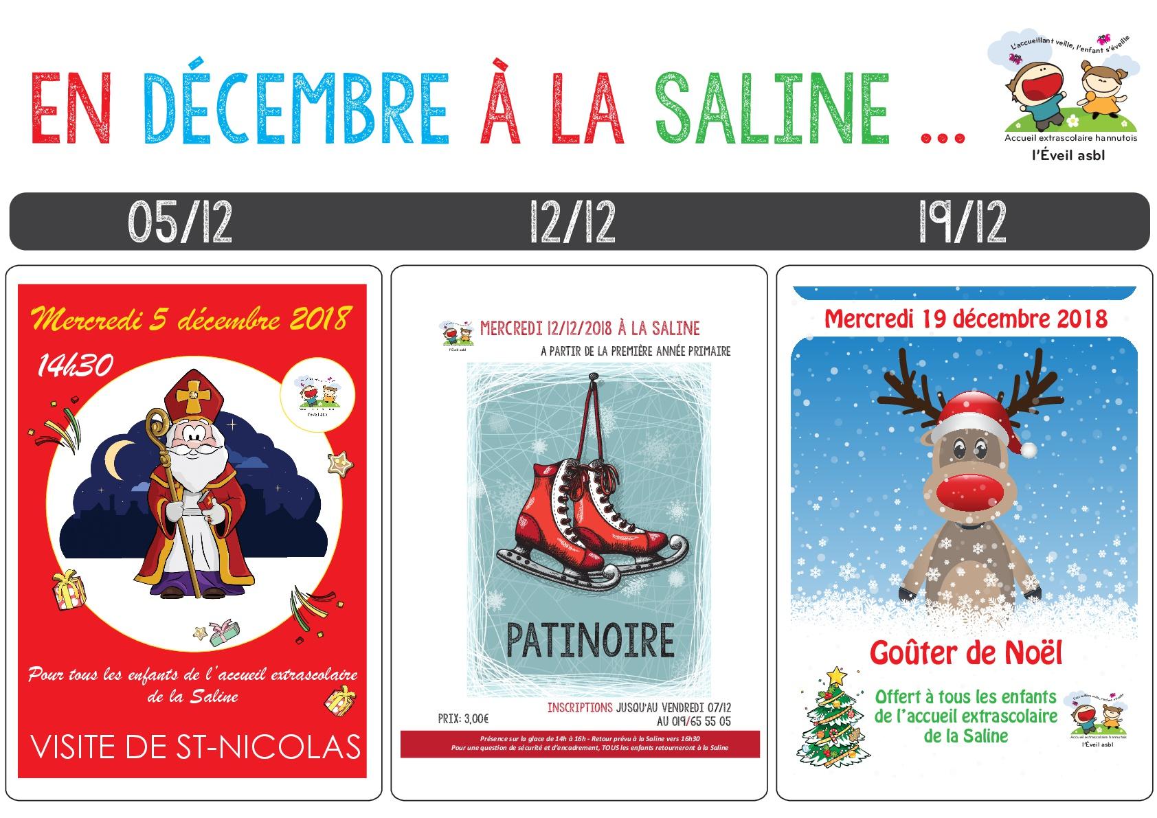 18.12 Programme Saline2